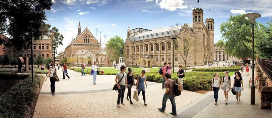 阿德莱德大学 University of Adelaide